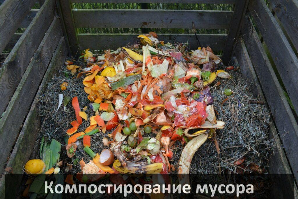 Переработка органических отходов червями в домашних условиях