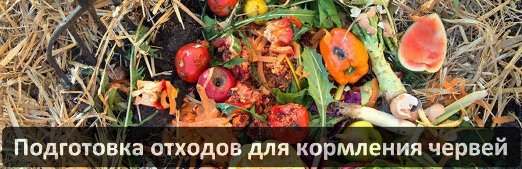 Виды и способы ферментации отходов