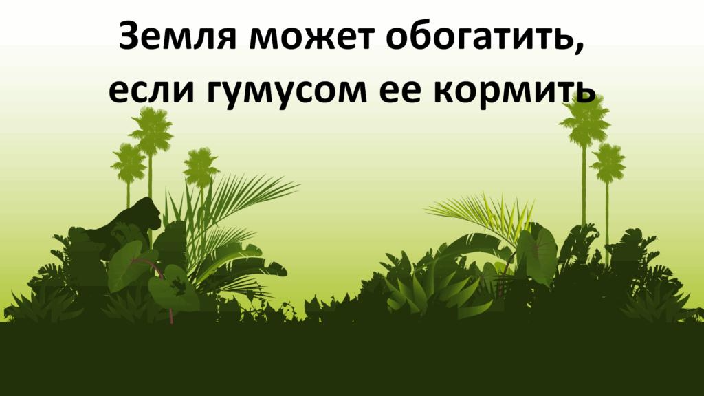 Какие виды биогумуса есть
