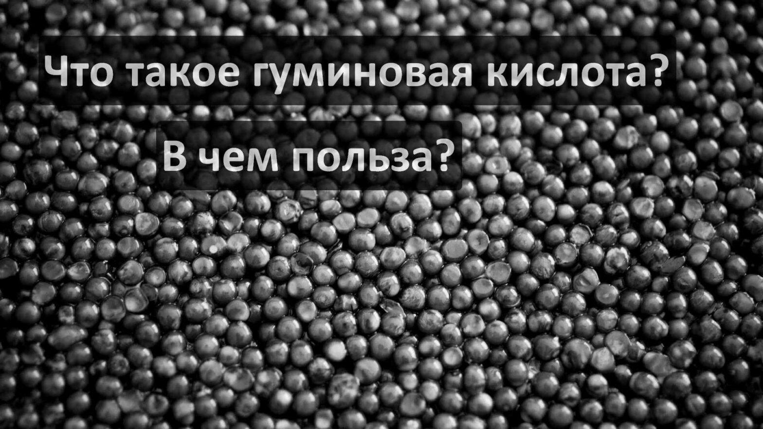 Что такое гуминовая кислота? В чем польза?