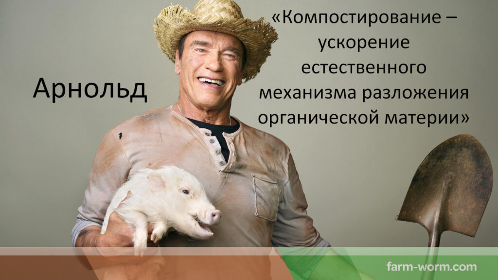 Книга Горбунова В. В.: «Дождевые черви для повышения урожая»