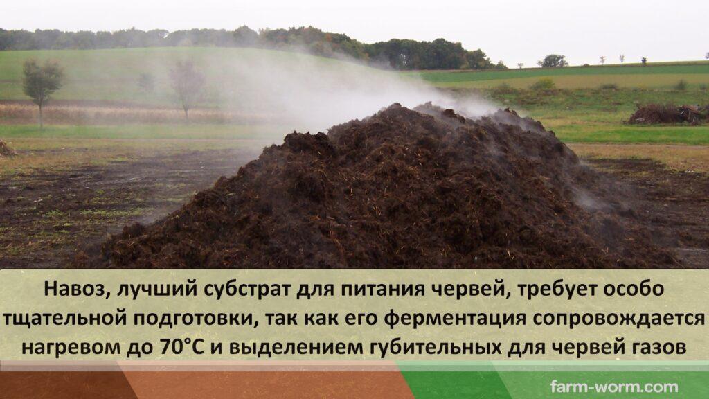 Промышленное вермикомпостирование органических отходов