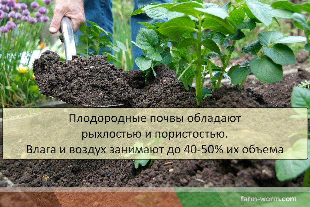 Как облагородить почву