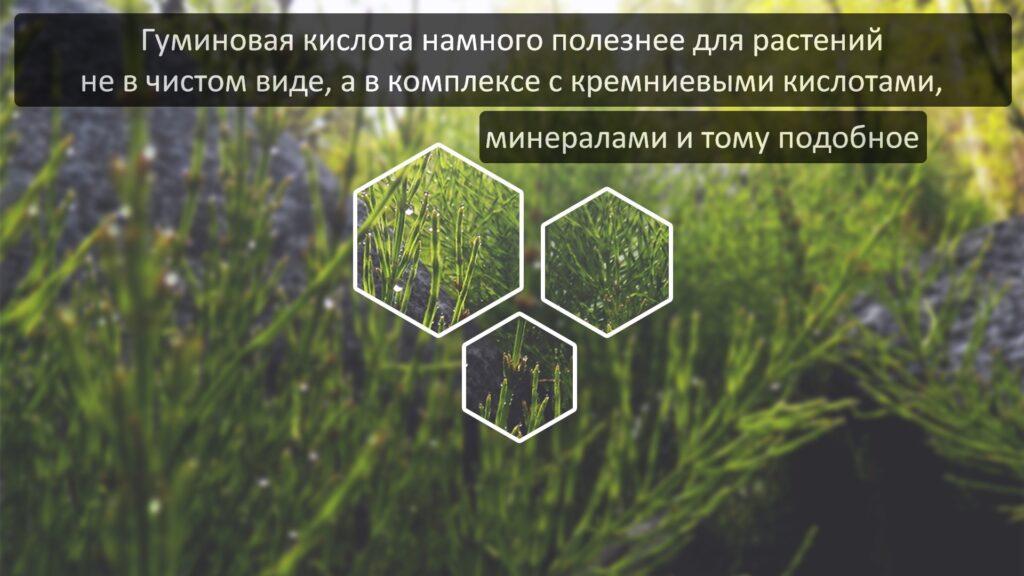 Удобрения на основе гуминовых кислот