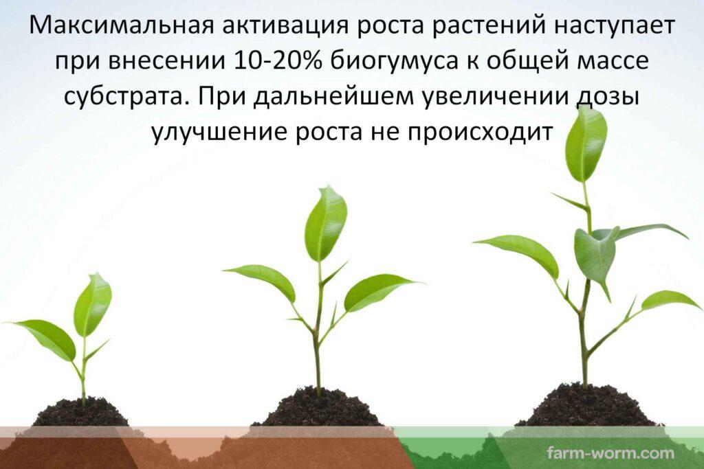 Рекомендации норм внесения биогумуса в почву
