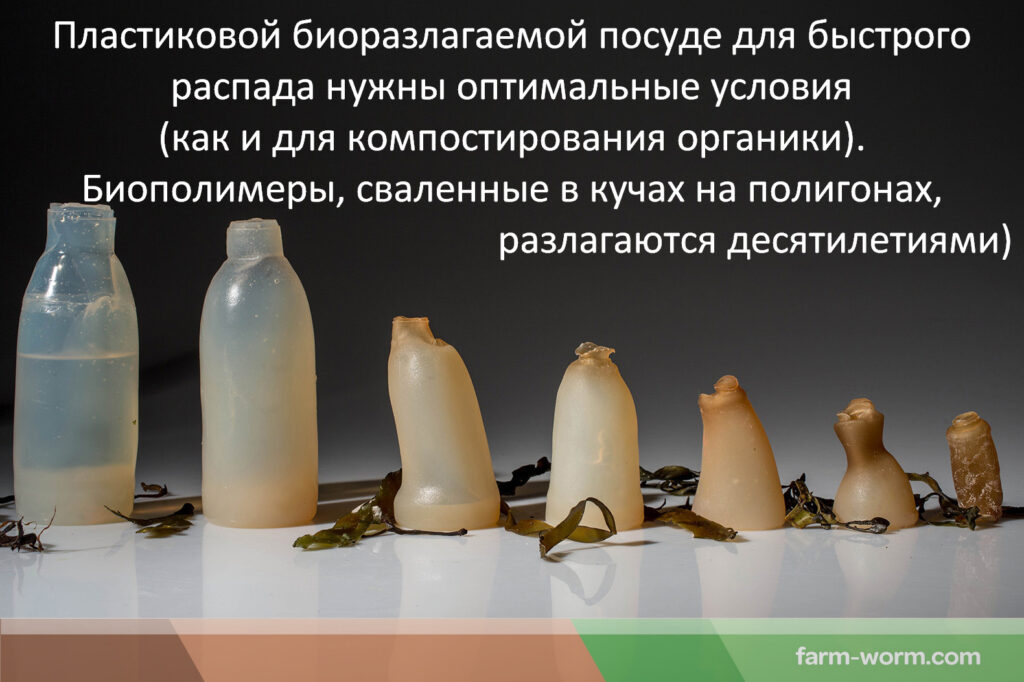 Альтернатива пластику - биодеградируемая пленка