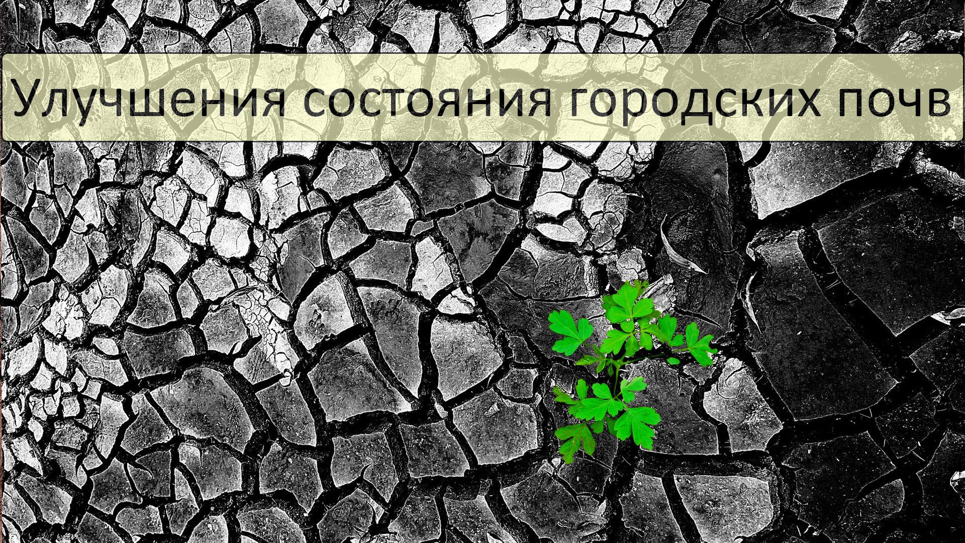 Улучшения состояния городских почв