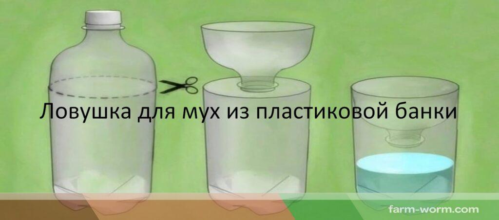 Методы борьбы с паразитами дождевых червей