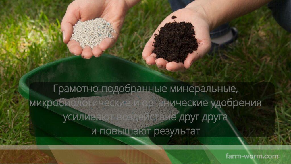 Удобрения из эффективных микроорганизмов (эм-удобрения)