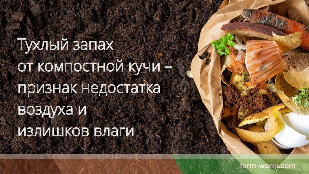Компостирование пищевых отходов в домашних условиях